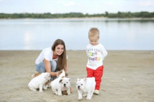 NuVet Labs: Important Things to Remember for New Puppy Parents