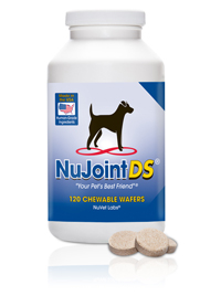 nujoint-ds-reviews