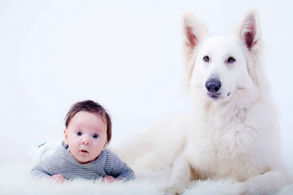 Nuvet - Baby with Dog