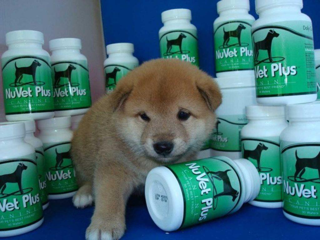 NuVet-Plus-Vitamin