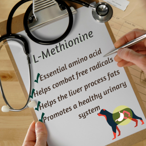 L-methionine; dogs; happy; pet health