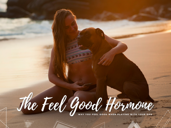 1 The Feel Good Hormone