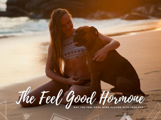 1 The Feel Good Hormone