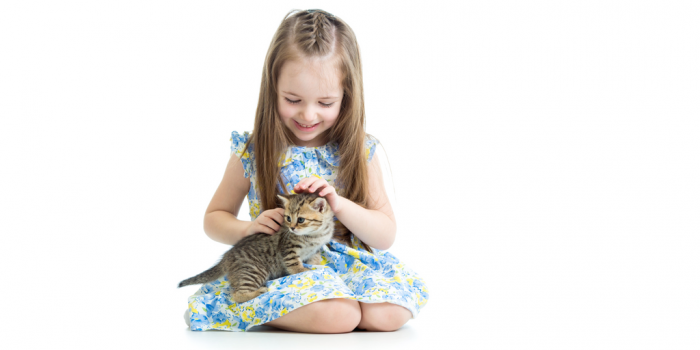 human animal bond nuvet labs pet health tips and advices